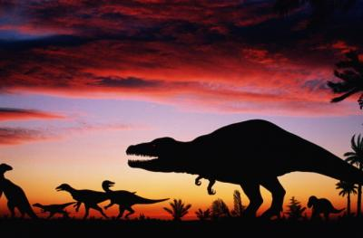 20090317224804-2007-10-16-sl-dinosaurios-sombras.jpg