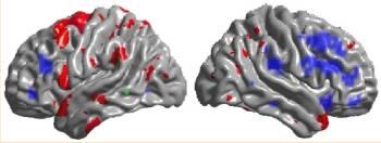20091012194909-tetris-brain.jpg