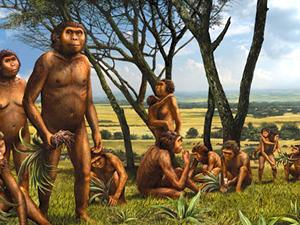 20100316231914-nuevos-hominidos.jpg