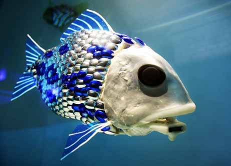 20110107173217-robot-fish.jpg