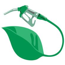 20110516202608-429-biocombustibles.jpg
