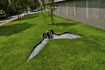 20120209204223-llegan-los-robots-murcielago-el-futuro-en-micro-vehiculos-aereos-image365-.jpg