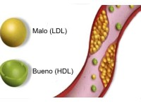 20130525144758-colesterol.jpg